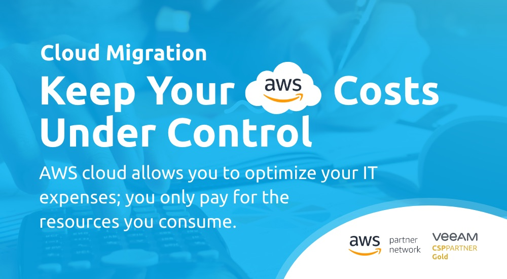How to Control Your IT Costs in the AWS Cloud?